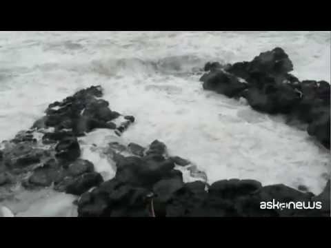 Tetti divelti e alberi abbattuti, Sicilia sfiorata dal ciclone