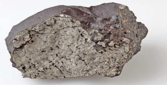 Sul meteorite marziano Tissint materia origine biologica