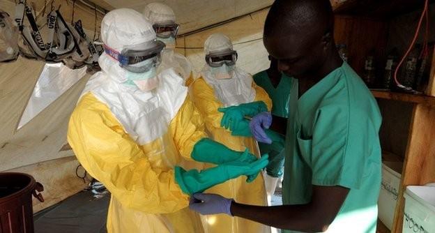 Il paziente zero di Ebola è un bimbo morso dai pipistrelli