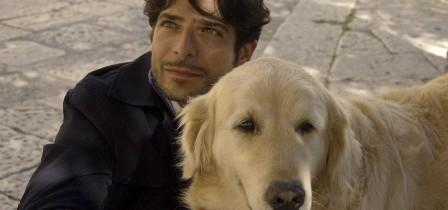 """Ecco """"Italo"""", il cane protagonista al cinema e cittadino onorario"""