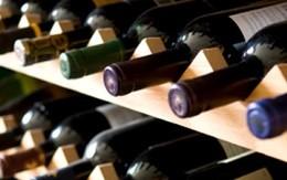 I vini vanno conservati al meglio, posto in cantina affittasi