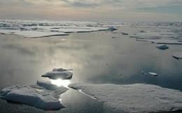 Gli scienziati di tutto il mondo al capezzale dell'Artico (video)