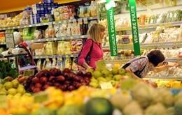 Dal supermercato al frigo di casa: come conservare bene il cibo