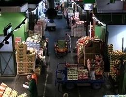 Fao e Unione mondiali mercati ingrosso, stop a spreco cibo