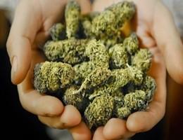 Corte suprema Messico apre la strada a consumo legale di cannabis