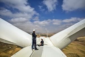 Green economy, Italia a sorpresa prima in Europa. Male invece per il consumo del suolo