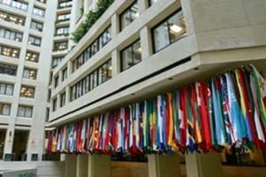 Banche, Fondo monetario internazionale incalza l'Italia su sofferenze e piccoli istituti