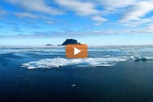 Countdown e melting down: il Mar Glaciale Artico verso l'addio