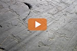 Le pietre della Valle Camonica ora sono patrimonio mondiale dell'Unesco