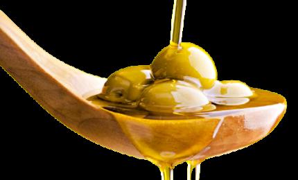 Otto italiani su dieci non sanno abbinare olio di oliva al cibo