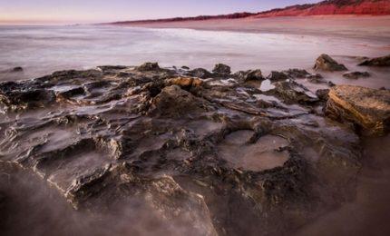 Jurassic park in Australia: scoperte le impronte di 21 dinosauri