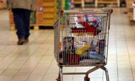 Istat: carrello spesa più caro, alimentari +2,3%