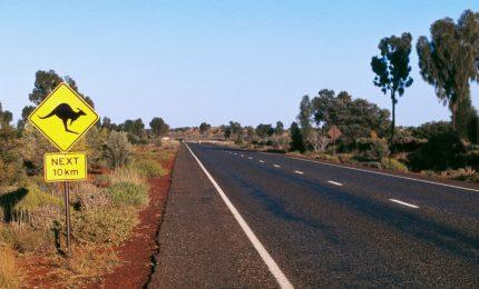 Dodicenne scappa di casa e guida per 1300 chilometri, fermato dalla polizia