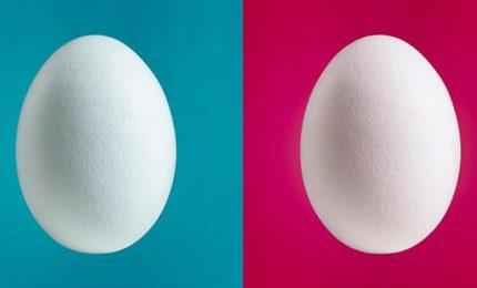 Twitter dice addio all'uovo del profilo anonimo