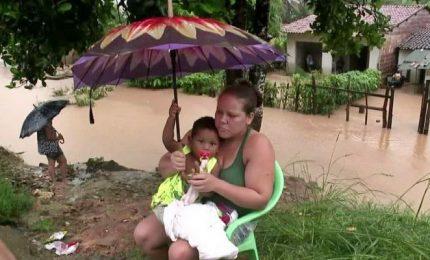 Inondazioni e frane in Brasile, morti e 50mila sfollati