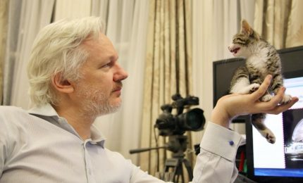 Procura svedese archivia accusa stupro contro Assange