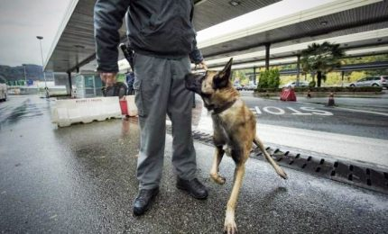 Operazione antidroga tra Roma e Barcellona, 21 arresti