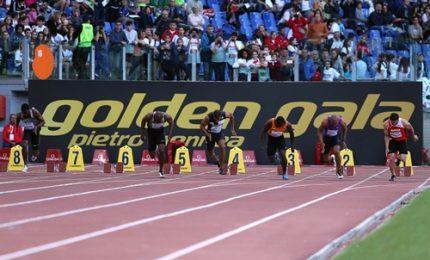 Golden Gala Pietro Mennea, 17 ori olimpici in campo