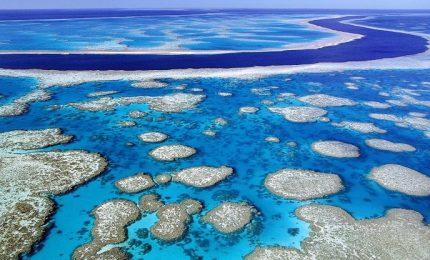 Australia, quanto vale la Barriera Corallina? 37 miliardi euro