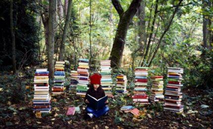 La biblioteca del futuro sta crescendo nelle foreste di Oslo