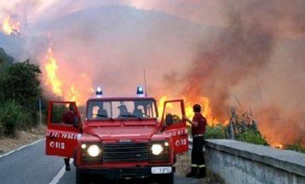 Incendi, 795 interventi di cui 153 in Sicilia