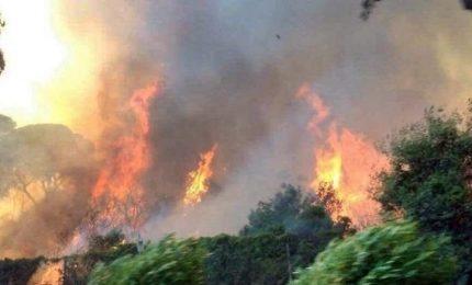 La Sardegna brucia, 2150 roghi in soli 2 mesi