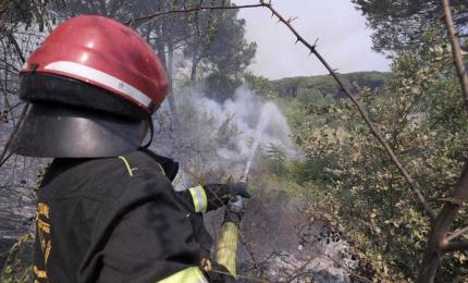 Incendi, oltre 700 interventi dei vigili del fuoco oggi in Italia