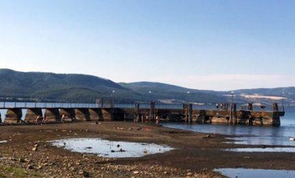 Comuni Lago di Bracciano in allarme: ecosistema a rischio