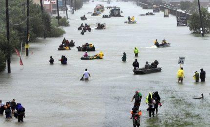 Piogge record e 30 morti, ora Harvey di nuovo in Louisiana