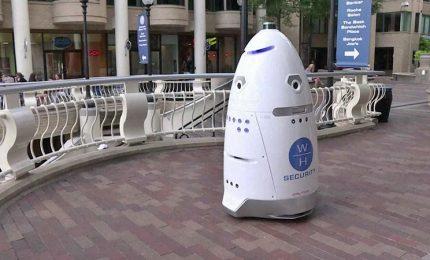 Il primo giorno di lavoro cade nella fontana, sostituito guardia-robot
