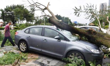 "Hong Kong e Macao, 126 morti per tifone ""Hato"""
