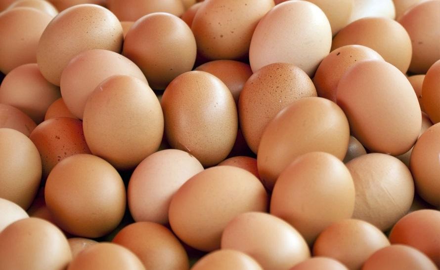 """Uova contaminate: """"Quest'anno importati dall'Olanda 578mila chilogrammi"""". Ministero rassicura: nessuna distribuzione in Italia"""