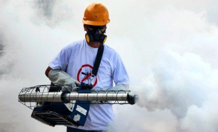 """Iss avverte: """"Epidemia Chikungunya continuerà, disinfestare"""""""