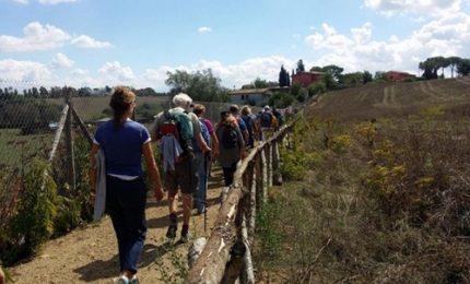 Cinquanta km a piedi Assisi-Gubbio per la custodia del Creato
