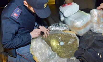 Droga tra Sicilia e Sud America, 19 persone in manette