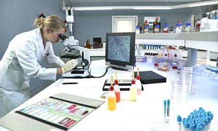 La molecola DRP1 nuovo alleato nella lotta ai tumori