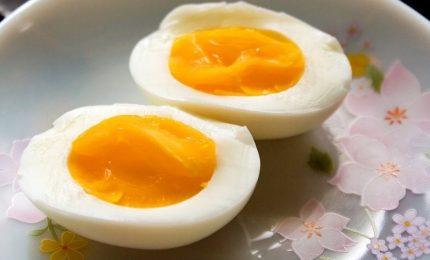 Arriva l'uovo sodo vegano, brevetto università di Udine