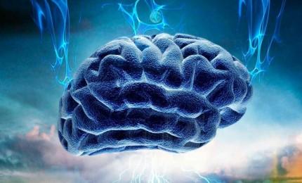 """Per la prima volta """"filmato"""" il cervello quando stimolato dalla """"molecola della felicità"""""""