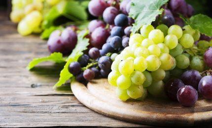 Autunno, è tempo di uva. Le proprietà benefiche del frutto