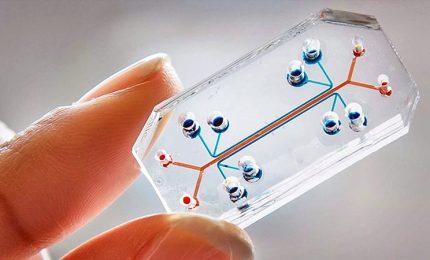Esami diagnostici rapidi e a casa propria, il futuro della diagnosi tascabile grazie ai Lab-on-a-Chip