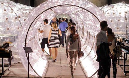 Le contraddizioni e il fioretto: la Biennale dopo la Biennale