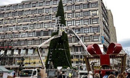 """Peggio di """"Spelacchio"""", polemica per il triste albero di Belgrado. Un pino finto 83mila euro"""