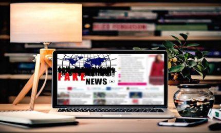 Allarme fake news in sanità, informazioni sbagliate per 8,8 milioni di italiani