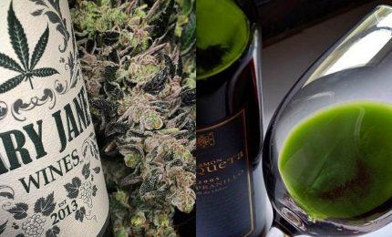 Usa, arriva il vino alla marijuana. In cantiere anche lo spumante