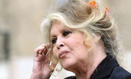 """Brigitte Bardot attacca: """"Molte attrici cercano solo pubblicità"""""""