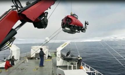 Lo spettacolare fondale dell'Antartide mostrato da Greenpeace