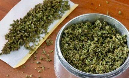 Rivoluzione in California, al via vendita libera di marijuana