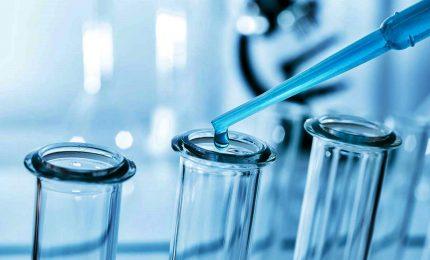 Tumore colon-retto, 65% degli italiani sconfigge la malattia