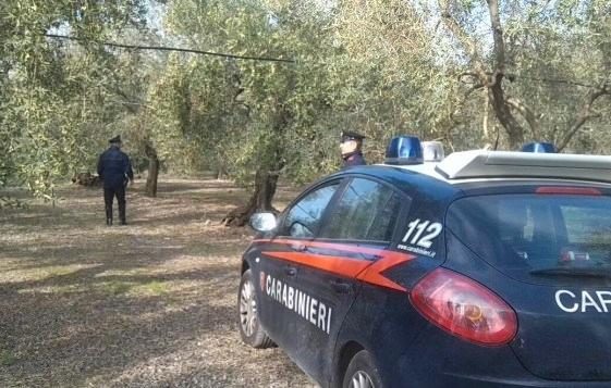 Coppia anziani morti in canale ad Aquileia, forse omicidio-suicidio