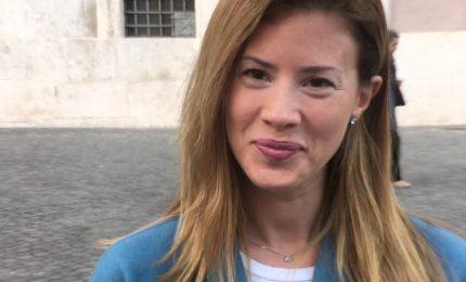 Attacchi a Brunetta, Forza Italia insorge